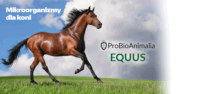 ProBioAnimalia EQUUS - spray do kopyt